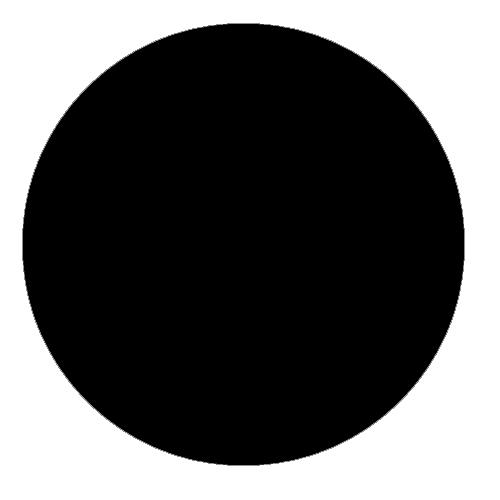 CANON PHOTO BLACK INK FOR BC-22e CARTRIDGE - GALLON BOTTLE